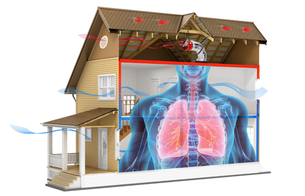 Give Your Home The Breath of Fresh Air That it Needs